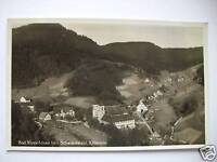 Ansichtskarte Bad Rippoldsau bad. Schwarzwald