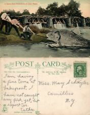 TAKES REAL FISHERMEN TO LAND THESE COMIC FISHING ANTIQUE POSTCARD
