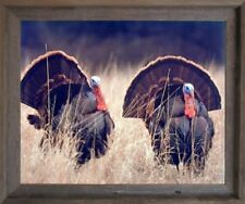 Pair of Wild Turkeys Animal Bird Hunting Wall Art Barnwood Framed Picture 19x23
