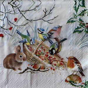 5 x Single Paper Cocktail Napkins - Decoupage - Birds Rabbit Robin Snow  BC17