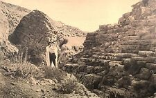 Vintage Postcard: On the Way to Jericho, Israel ca. 20s