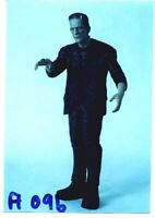 "13"" FRANKENSTEIN BORIS KARLOFF Horror Classic Movies Vinyl Model Kit 1/6"