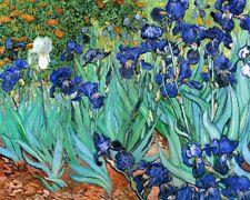 'Iris quadro - Stampa d''arte su tela telaio in legno'