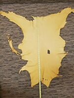 Tanned Deer Leather Deerskin hide Soft golden color. 3 sq ft. Rendezvous