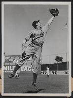 1941 Orig DODGER Press Photo - Pete Coscarart