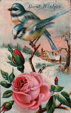 Blue and Yellow BIRDS on ROSES House in Background Vintage Postcard