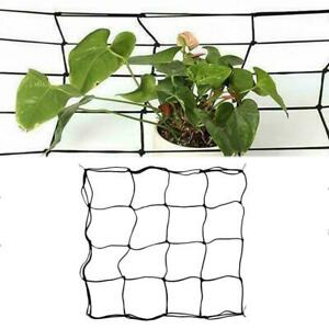 16 Holes Scrog Net Mesh Grow Tent Hydroponics Indoor Plant Support A1F7
