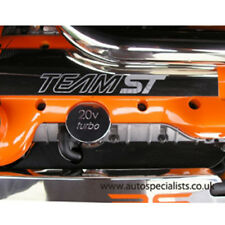 AutoSpecialists Stainless Fuel Injector Cover for Mk2 Focus ST