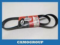 Belt Service V-Ribbed Belts OPEL Movano Vivaro Interstar Primera