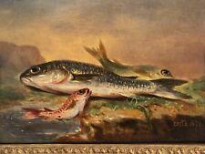 Dipinto Antico: Natura Morta Con Pesci Epoca 1891