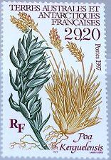 Taaf FSAT 1997 Maury 224 367 229 plantes de l'Antarctique plants flore MNH