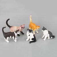 Ornament Plastic Neko Figurine Miniature Cat Mini Pet Model Simulation Animal