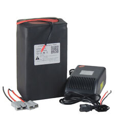 48V 22AH Lithium LiFePO4 Battery Pack Power for 1100W E-bike with 5A Charger