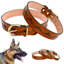 Genuine Leather Dog Collar Brown Adjustable Small Large Greyhound Chihuahua SML