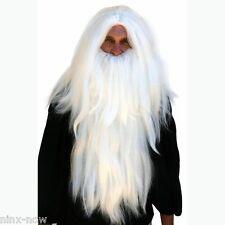 Deluxe Merlin Gandalf WIG and Beard SET men's fancy dress costume accessory