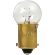 Sidemarker Lamp  Sylvania  1895.TP