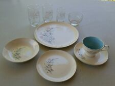 Vtg Taylor Smith Taylor Versatile Rare 9 Pc Set☆ Floral Spray☆Matching Glassware