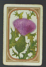 "Swap Playing Cards 1 VINT N/NMD  U.S  "" THISTLE ""  US98   THISTLE  FLOWER"