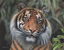 Original Acrylic Painting Tiger Portrait Wildlife Art by Parry Johnson 11x14