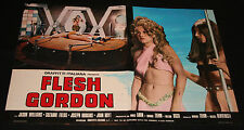 Fotobusta-Flesh Gordon di Howard Ziehm e Michael Benveniste, con Jason Williams