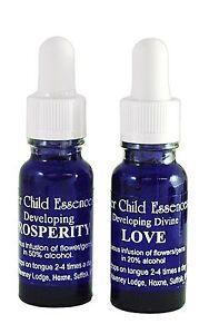 15ml Inner Child Vibrational Essence (Intimacy - Vision)