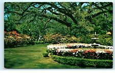 Mobile Alabama Formal Garden Azalea Time Harlan Shopes Ashland Place PC C13