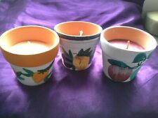 "5x Coloured Candles in 2"" tall Decorated Flower Pots Apple Orange Lemon NEW"