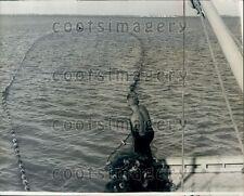 1965 Miami Seaquarium Crew Hauls in Porpoise With Net Press Photo