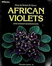 How to Select and Grow African Violets and Other G