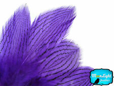 1 Dozen Purple Silver Pheasant Plumage Barred Feathers Fly Tying Jewelry Costume