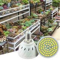 LED Grow Light Full Spectrum Growth Lamp Cooling Fan New Hydroponic Plant C3V8