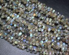 "Flash Blue Fire Labradorite Faceted Tear Drop Briolette Gem Beads Strand 4"" 10mm"