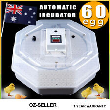 60 Chicken Hen Bird Poultry Eggs Digital Semi AUTOMATIC INCUBATOR 2015 model