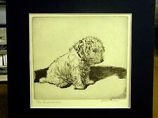 Diana Thorne 1935 THE INCONSOLABLE 2 -  SEALYHAM Dog Print Matted in BLACK MAT