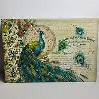 Pooch & Sweetheart Flip Top Nesting Box Peacock 97477 Med Punch Studio