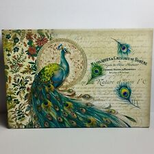Pooch & Sweetheart Flip Top Nesting Box Peacock 97477 Med Punch Studio
