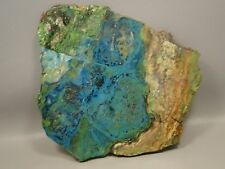 Parrot Wing or Chrysocolla Malachite 7.5 inch Polished Slab Rock Stone #3