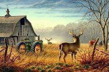 Not Framed Original Canvas Print Home Decor Wall Art Picture tranquillity deer