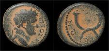 Decapolis  Gadara Titus AE17