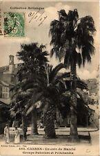 CPA   Cannes - Un coin du Marché - Groupe Palmiers et Pritchardia    (514187)