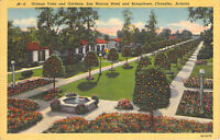 Orange Vista & Gardens San Marcos Hotel and Bungalows Chandler AZ Linen Postcard