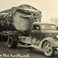 Logging In The Northwest RPPC Real Picture Old Truck Huge Log Transport Postcard