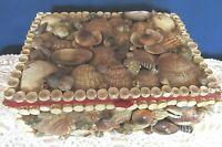 "Vintage Folk Art  Ocean Seashell Decor Trinket Jewelry Box Hand Made 5"" X 7"""