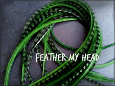 10  Feather Hair Extensions PICK YOUR OWN COLORS Med Length  Premium Cheap  L3