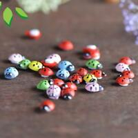 100x Mixed Ladybird Mini Self Adhesive Wooden Ladybugs Woodductse PRO UK