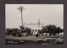 Egypte Le Caire Cairo 2 Photos Vintage argentique ca 1920