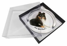 Tri-Col Sheltie Dog 'Love You Dad' Glass Paperweight in Gift Box Chri, DAD-108PW