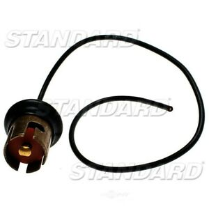 Lamp Socket  Standard Motor Products  S43N