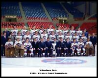 WHA 1978 - 79 Winnipeg Jets Color Team Picture 8 X 10 Photo Free Shipping