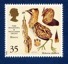 """Bittern"" illustrated on 1996 stamp - Unmounted mint"